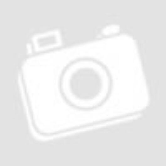 DONAU Archiváló doboz, A4, 100 mm, karton, zöld